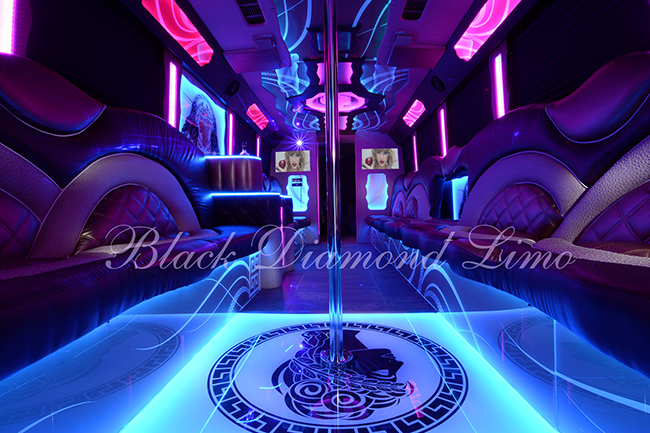 Palace Party Bus Rental in OKC